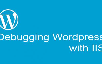 Debug WordPress for site running slow on Windows Server / IIS