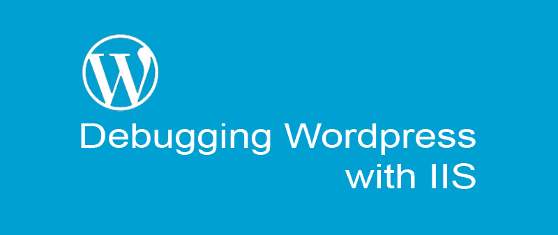 Debug WordPress for site running slow on Windows Server